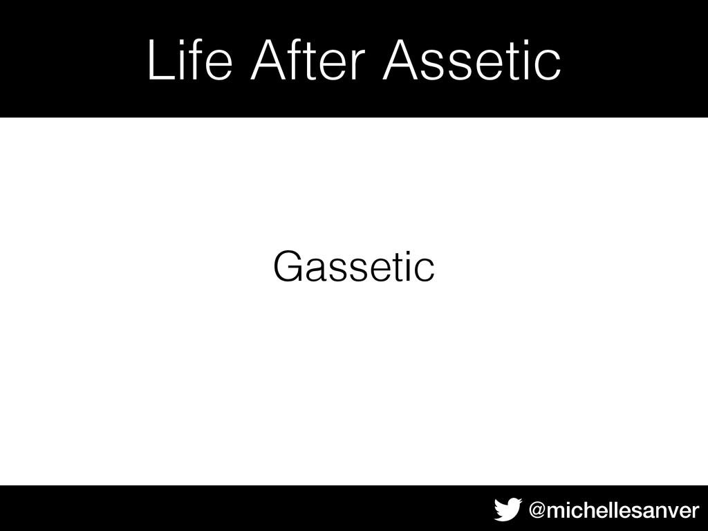 @michellesanver Life After Assetic Gassetic