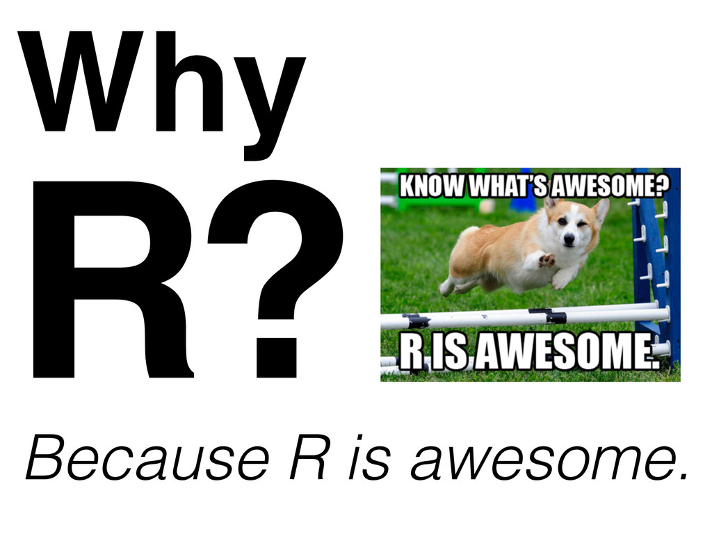Why Because R is awesome. R?