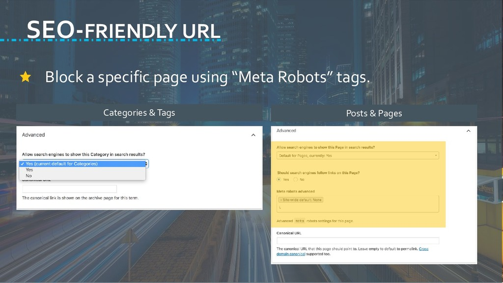 """Block a specific page using """"Meta Robots"""" tags...."""