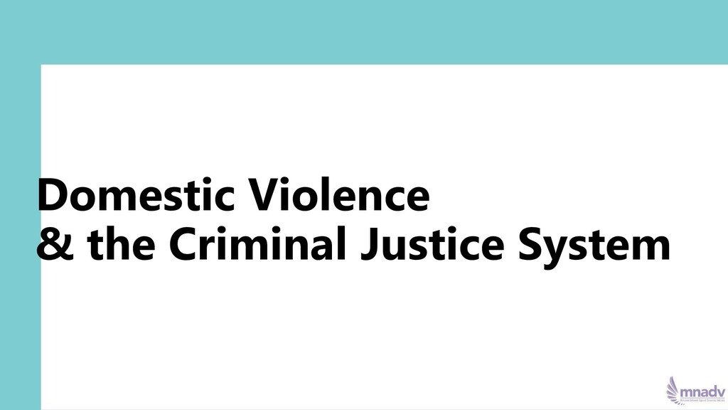 Domestic Violence & the Criminal Justice System