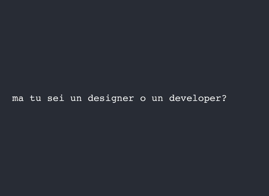ma tu sei un designer o un developer?