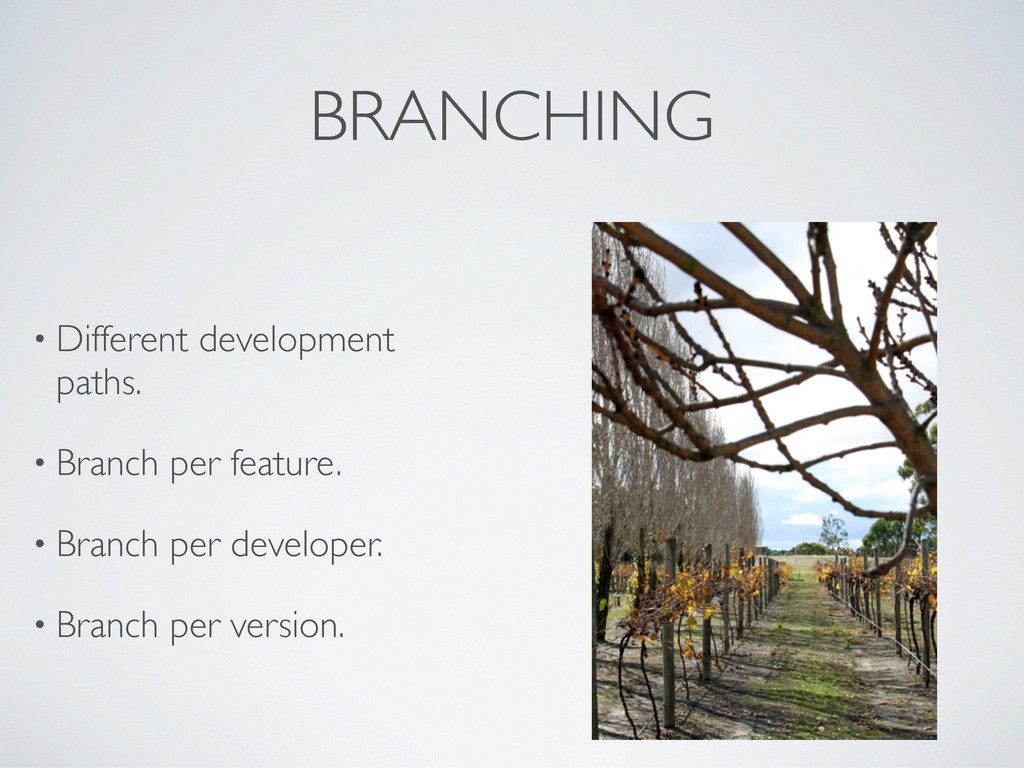 BRANCHING • Different development paths. • Bran...