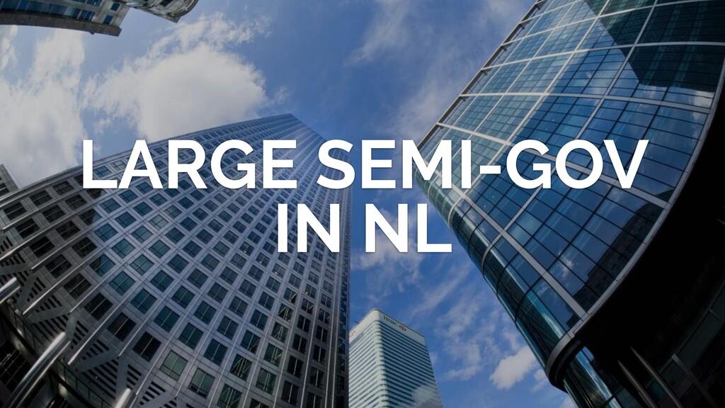 LARGE SEMI-GOV IN NL