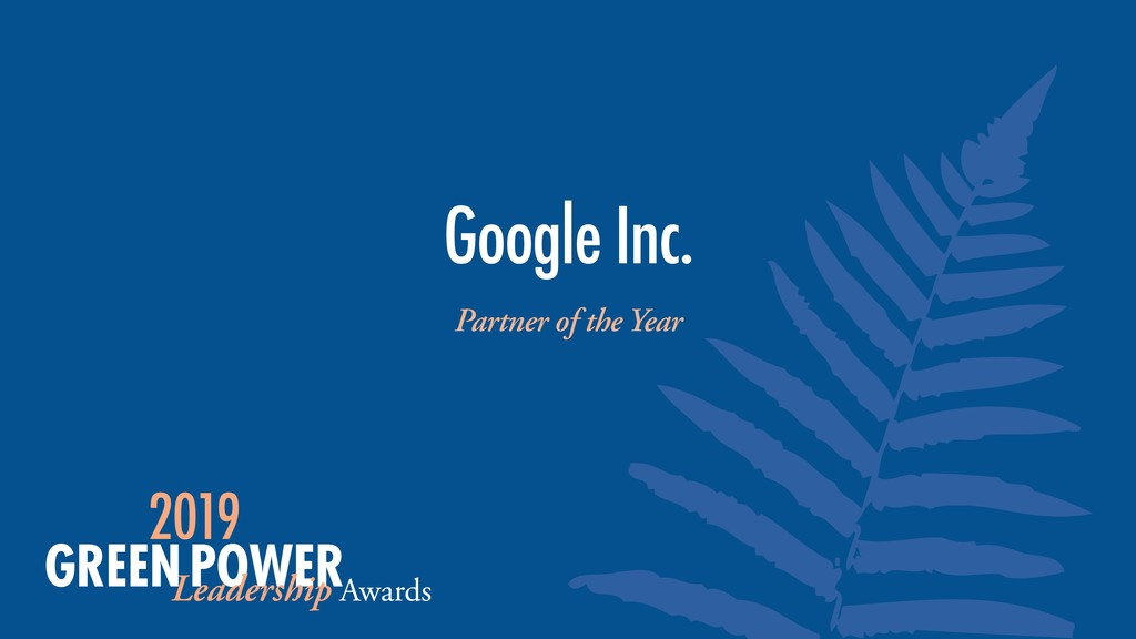 Partner of the Year Google Inc.