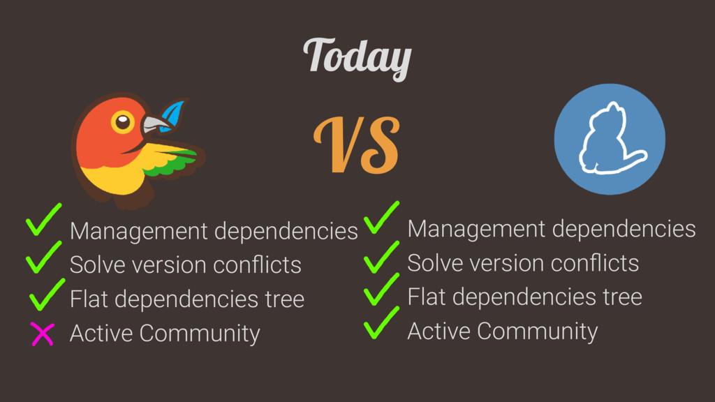 Today VS Management dependencies Solve version ...