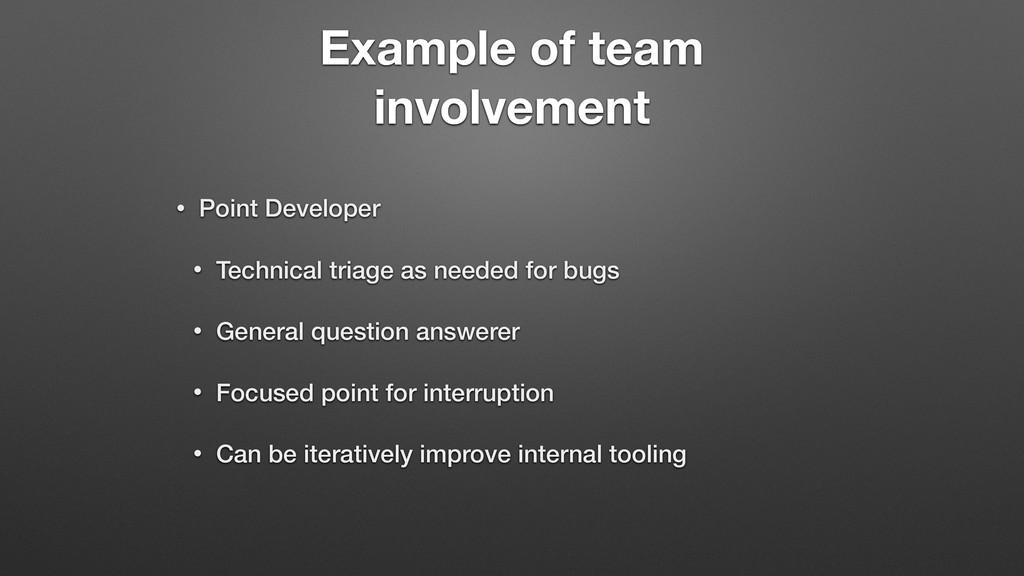 Example of team involvement • Point Developer •...