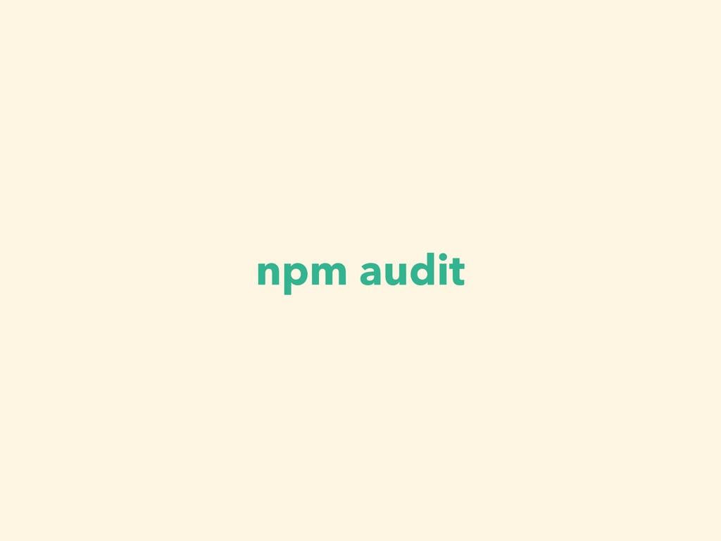 npm audit