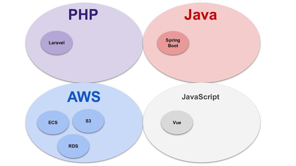 PHP Java AWS JavaScript Laravel Spring Boot Vue...