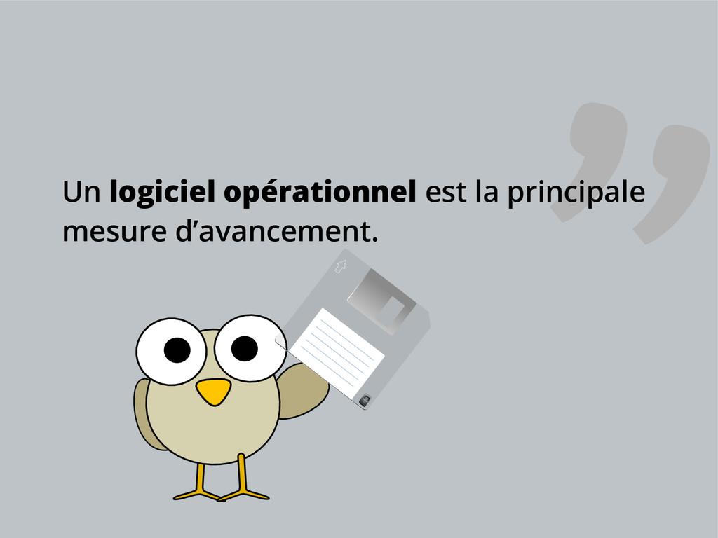 Un logiciel opérationnel est la principale mesu...