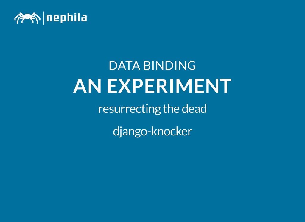 DATA BINDING DATA BINDING AN EXPERIMENT AN EXPE...