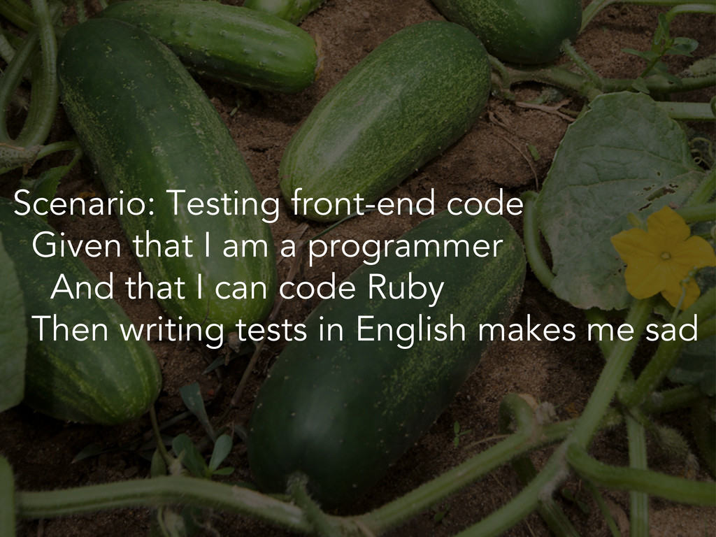 Scenario: Testing front-end code Given that I a...