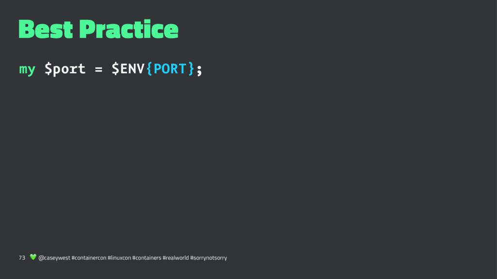 Best Practice my $port = $ENV{PORT}; 73 ! @case...