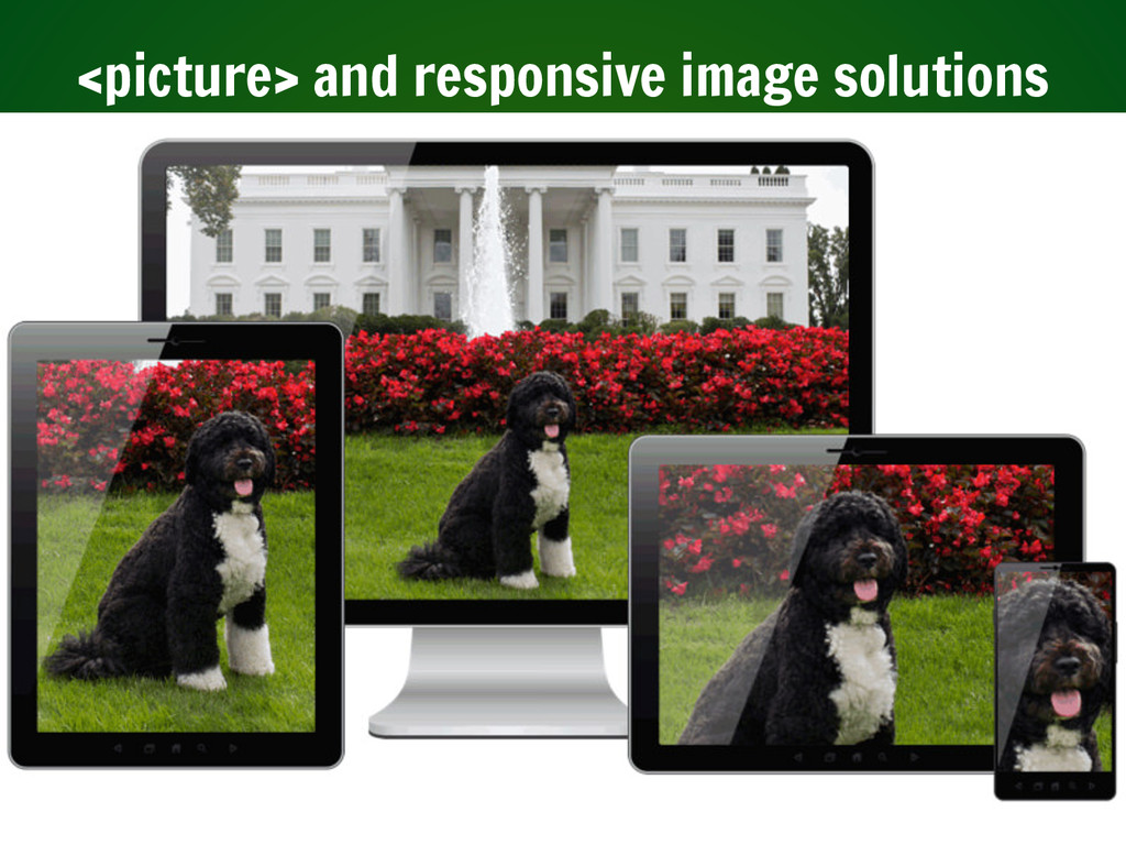<picture> and responsive image solutions