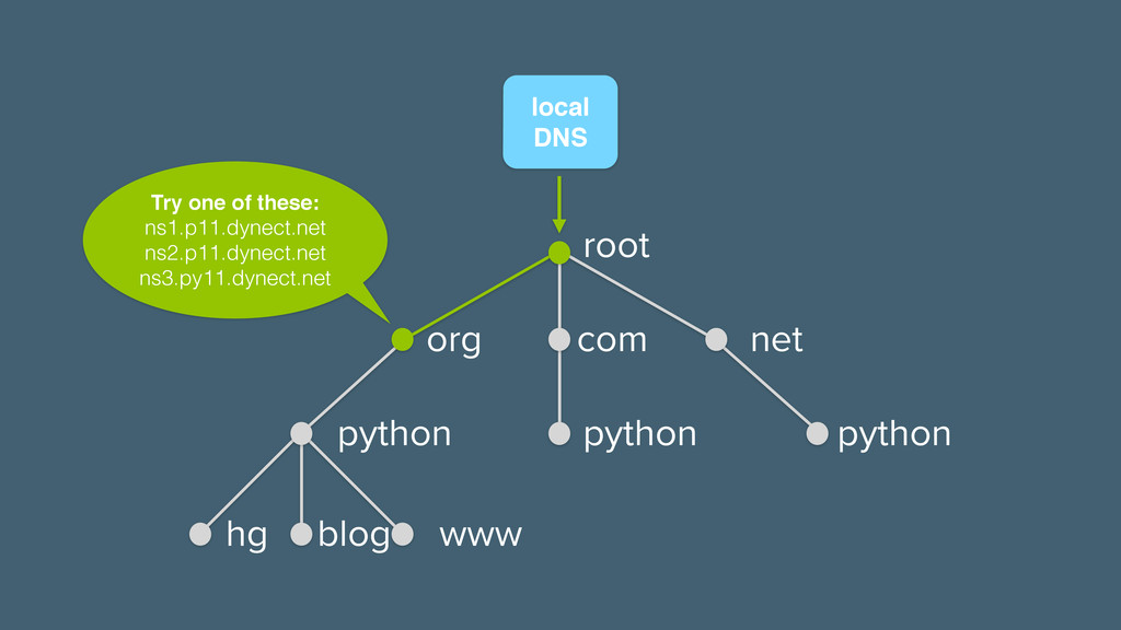 local! DNS Try one of these:! ns1.p11.dynect.ne...