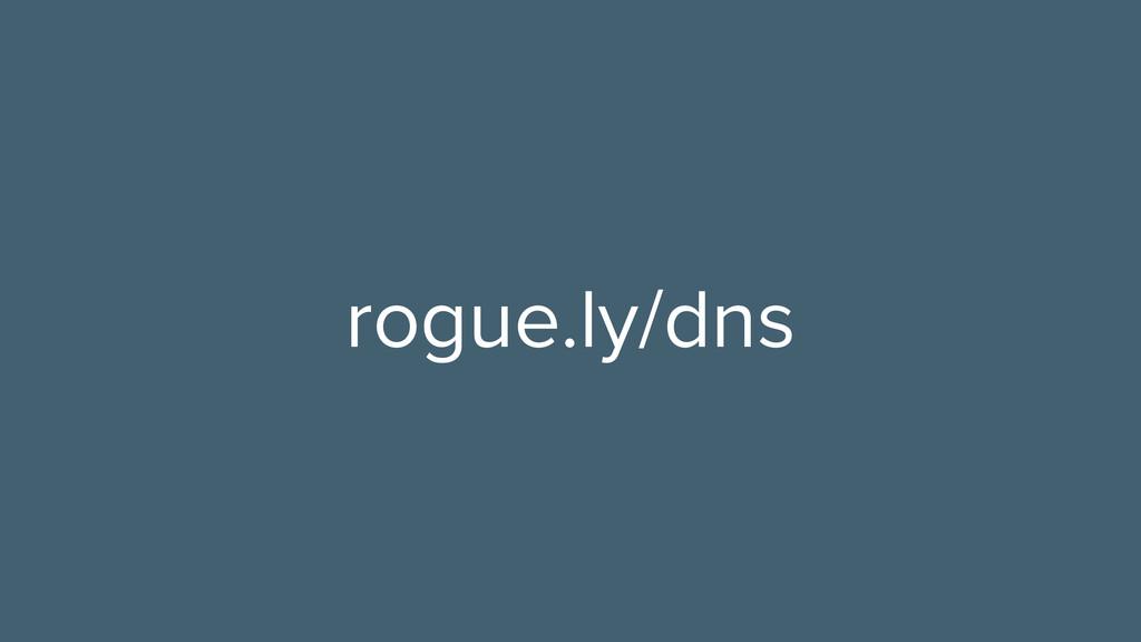 rogue.ly/dns