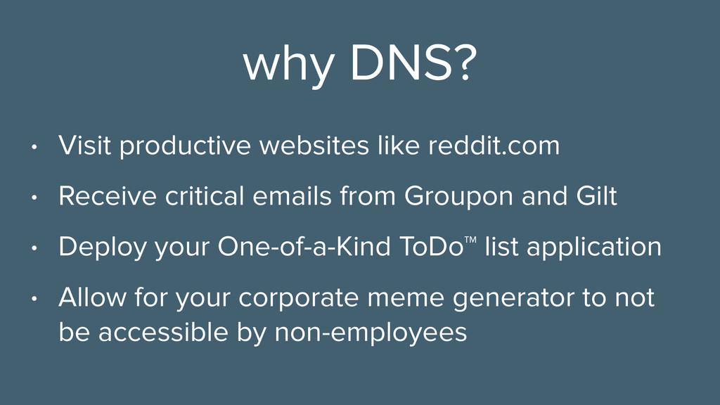 why DNS? • Visit productive websites like reddi...