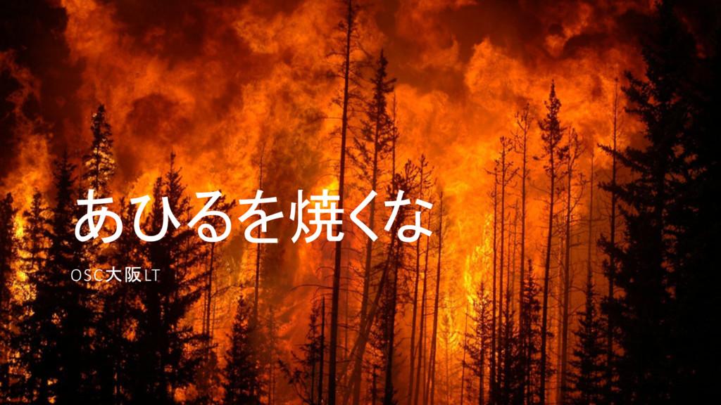 あひるを焼くな OSC大阪LT