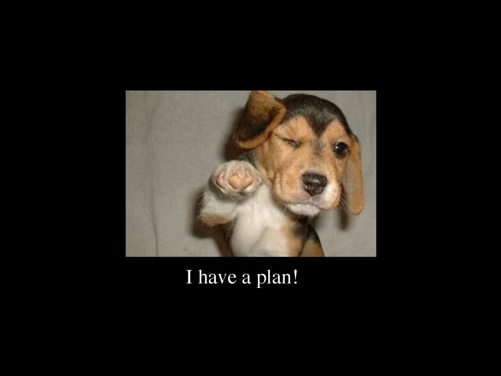 I have a plan!