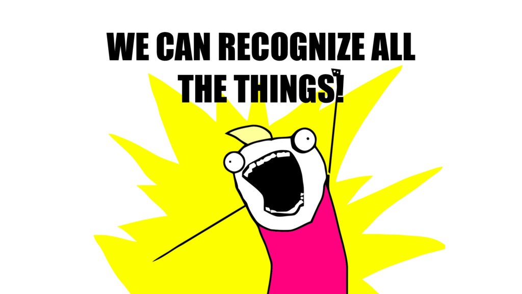 WE CAN RECOGNIZE ALL THE THINGS!