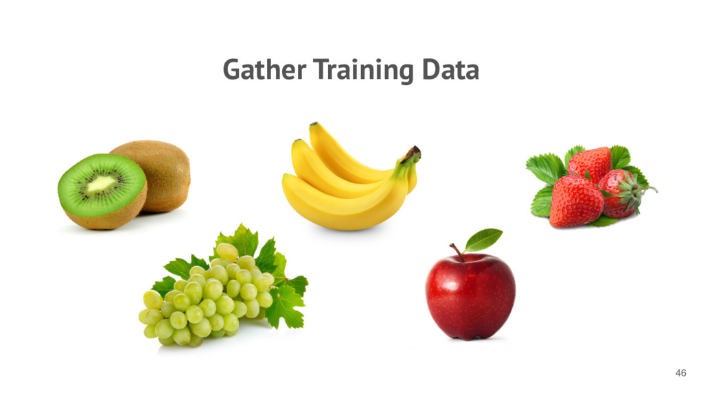 Gather Training Data 46