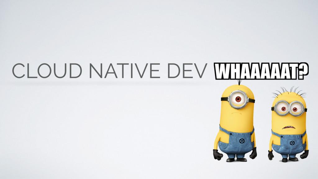 CLOUD NATIVE DEV