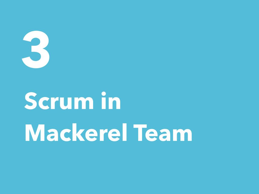 3 Scrum in Mackerel Team