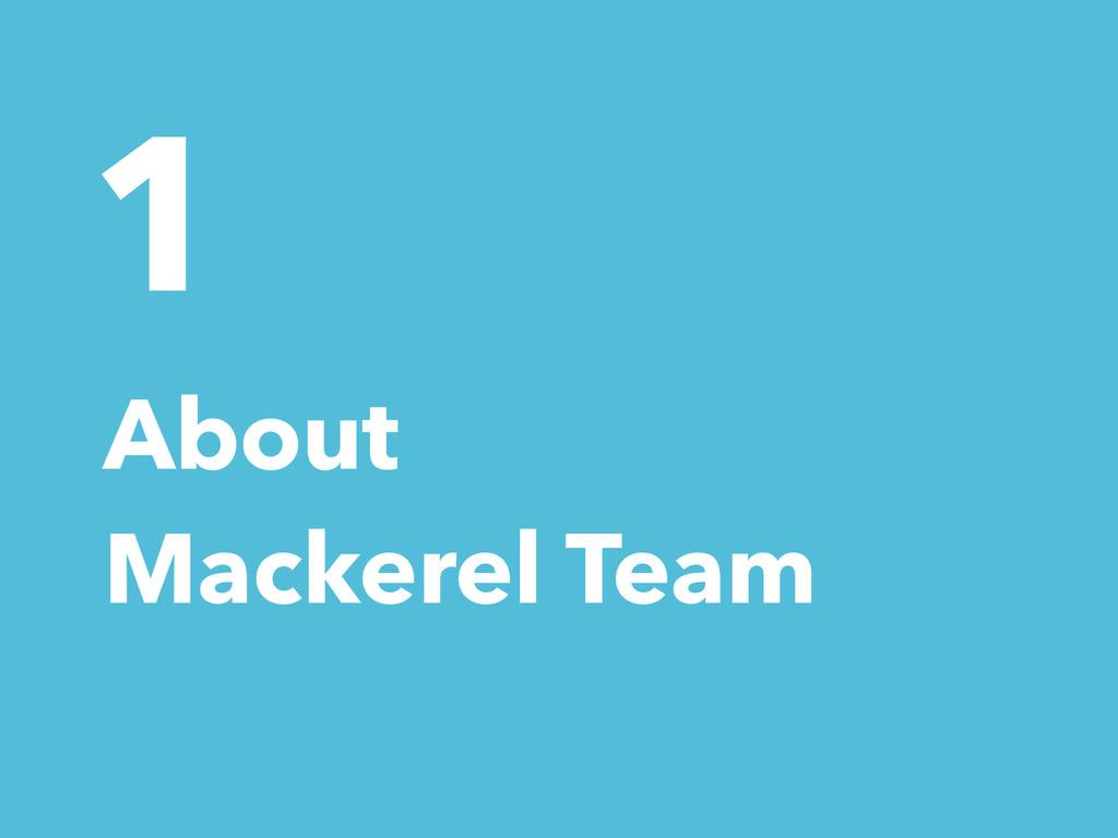 1 About Mackerel Team