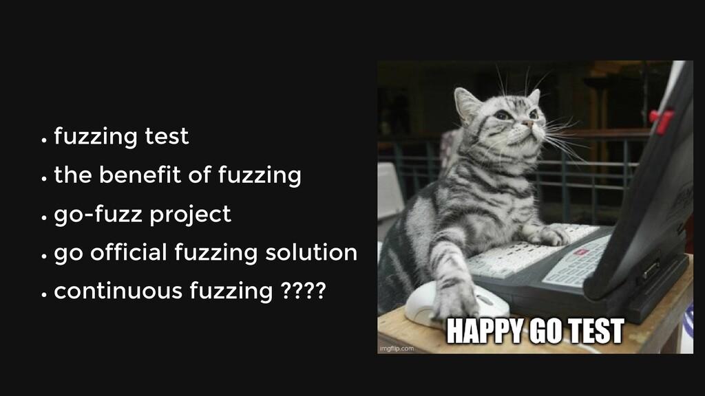 fuzzing test the benefit of fuzzing go-fuzz pro...