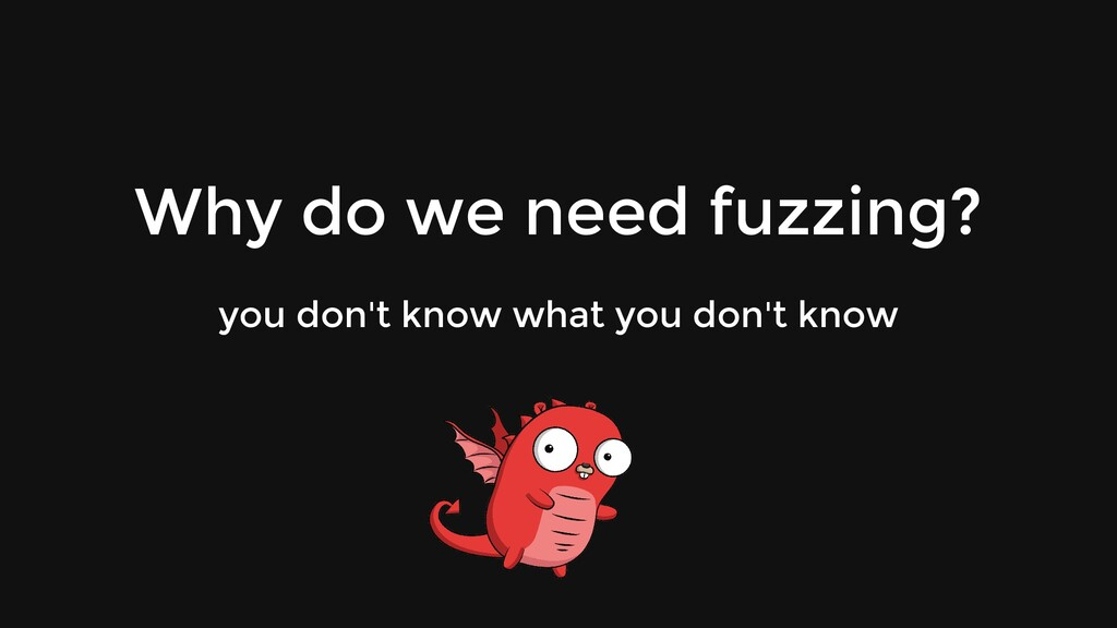 Why do we need fuzzing? you don't know what you...