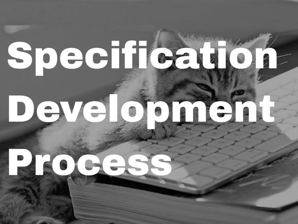 Specification Development Process