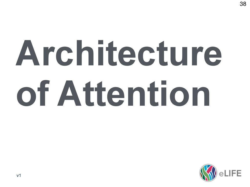 v1 38 Architecture of Attention
