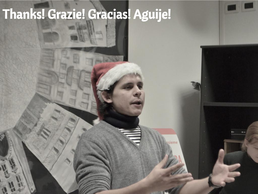 Thanks! Grazie! Gracias! Aguije!