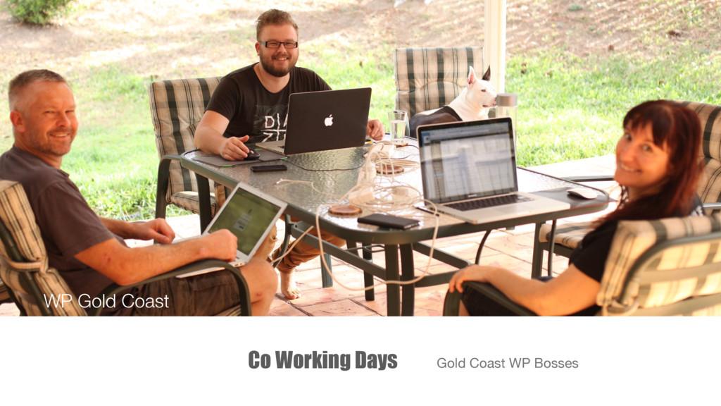 Co Working Days Gold Coast WP Bosses WP Gold Co...