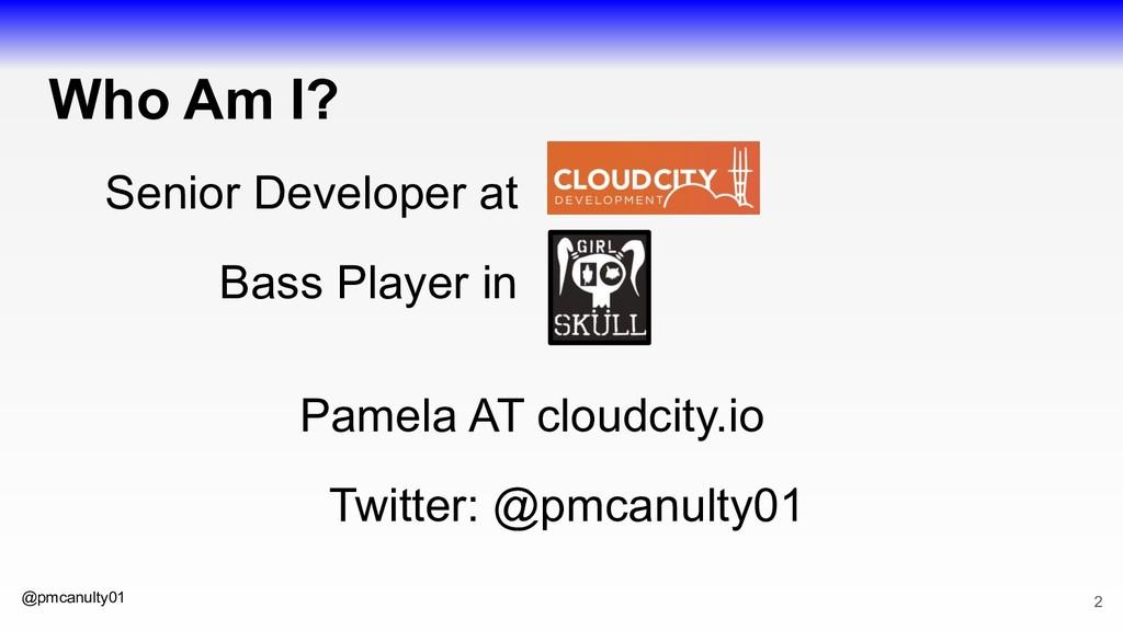 @pmcanulty01 Who Am I? Senior Developer at Bass...
