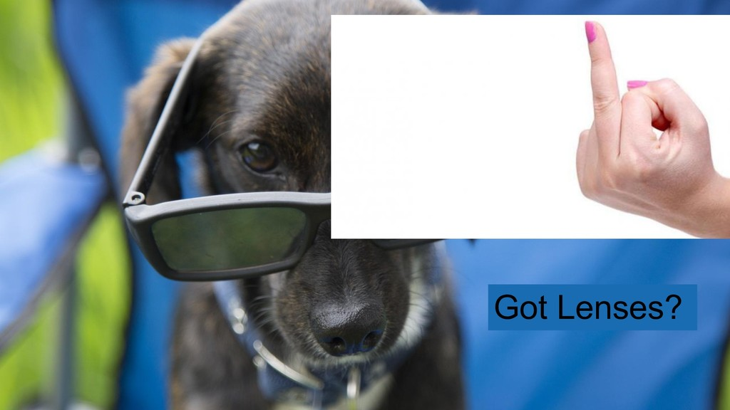 Got Lenses?