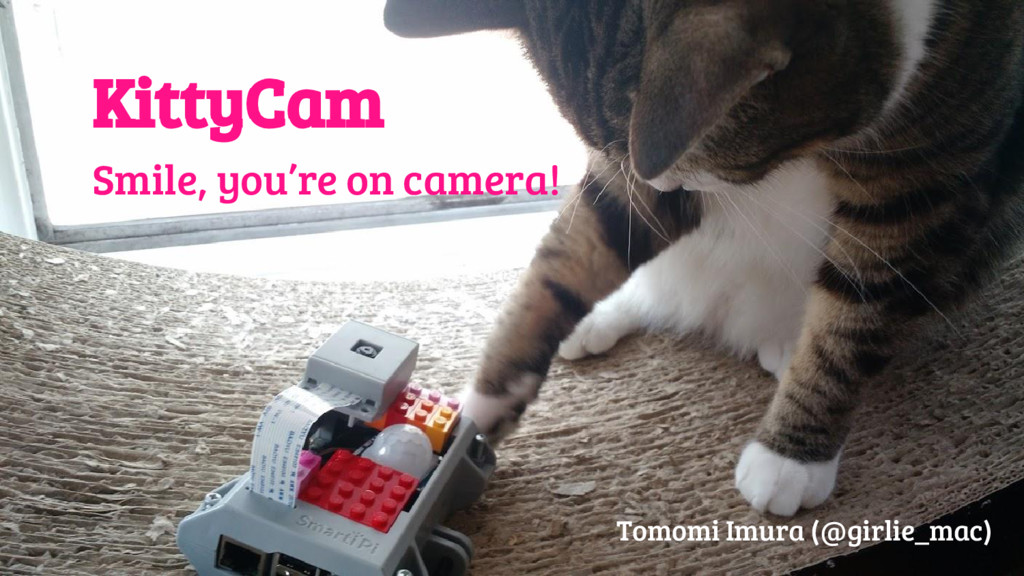 @girlie_mac KittyCam Smile, you're on camera! T...