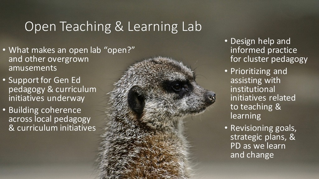 Open Teaching & Learning Lab • Design help and ...