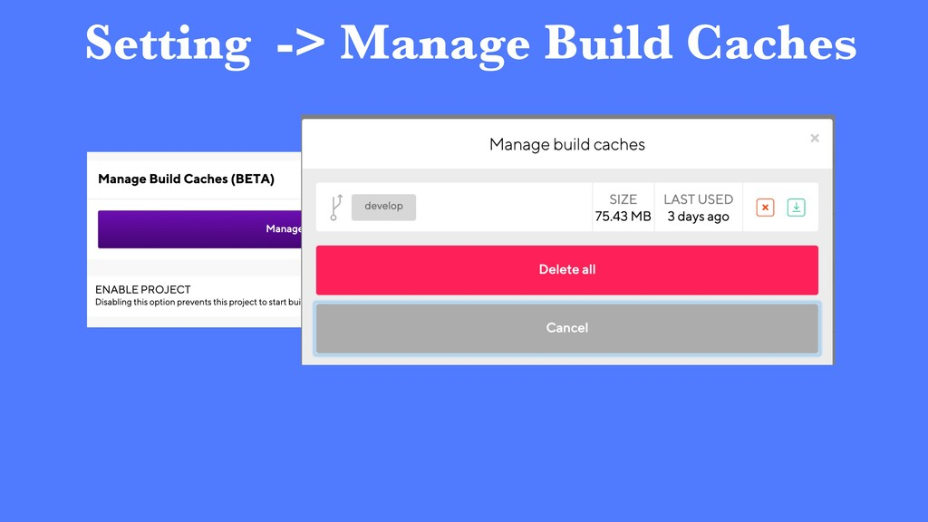 Setting -> Manage Build Caches