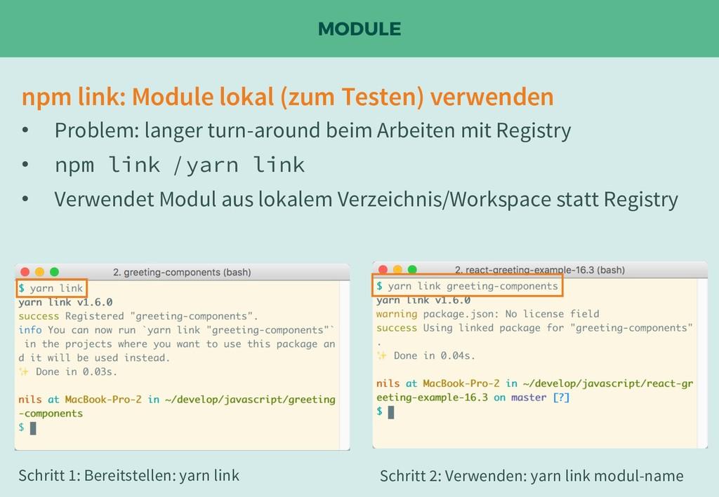 MODULE npm link: Module lokal (zum Testen) verw...