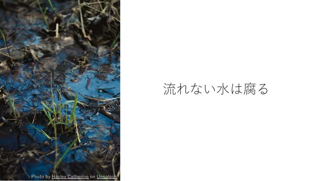 流れない⽔は腐る Photo by Hayley Catherine on Unsplash