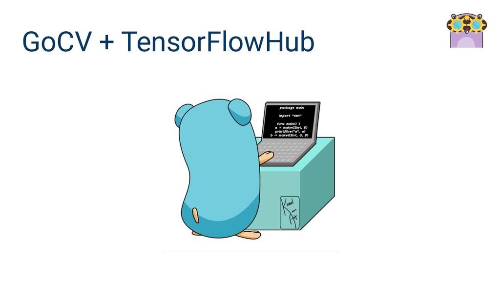GoCV + TensorFlowHub