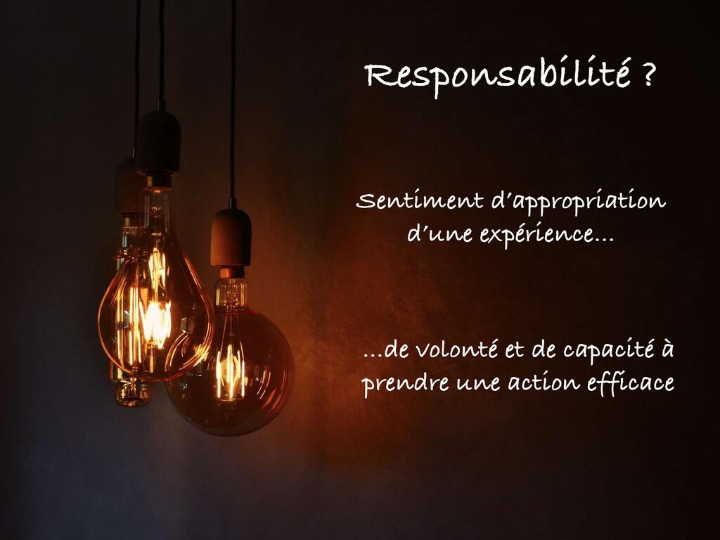 Responsabilité ? Sentiment d'appropriation d'un...