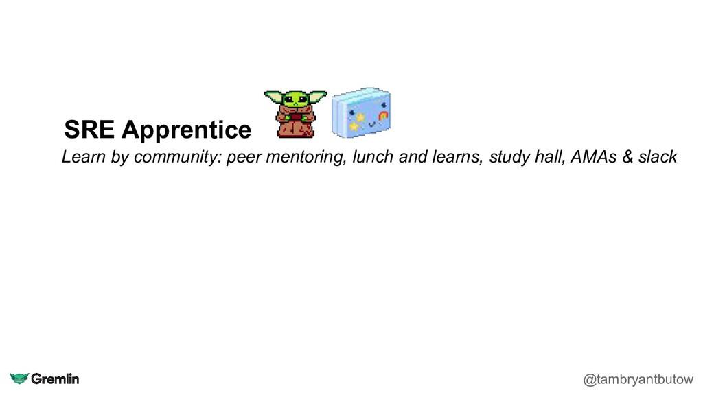SRE Apprentice Learn by community: peer mentori...