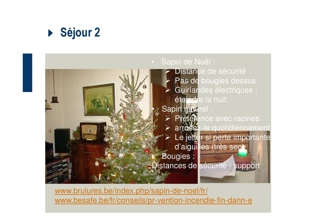 Séjour 2 • Sapin de Noël : Distance de sécurité...
