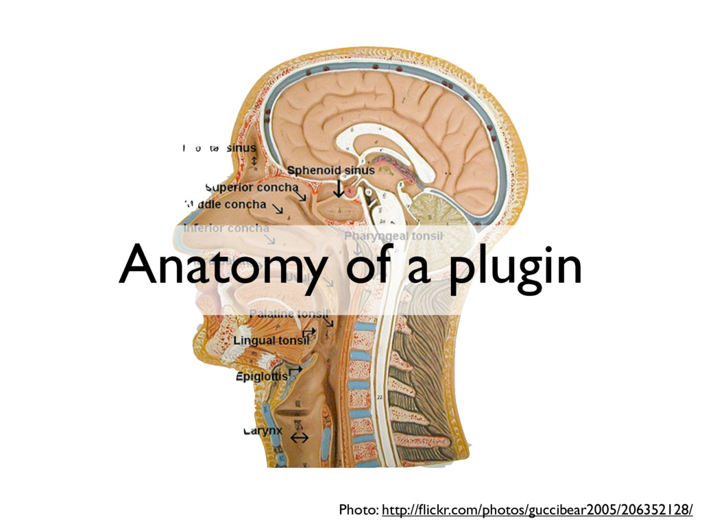 Anatomy of a plugin Photo: http://flickr.com/pho...