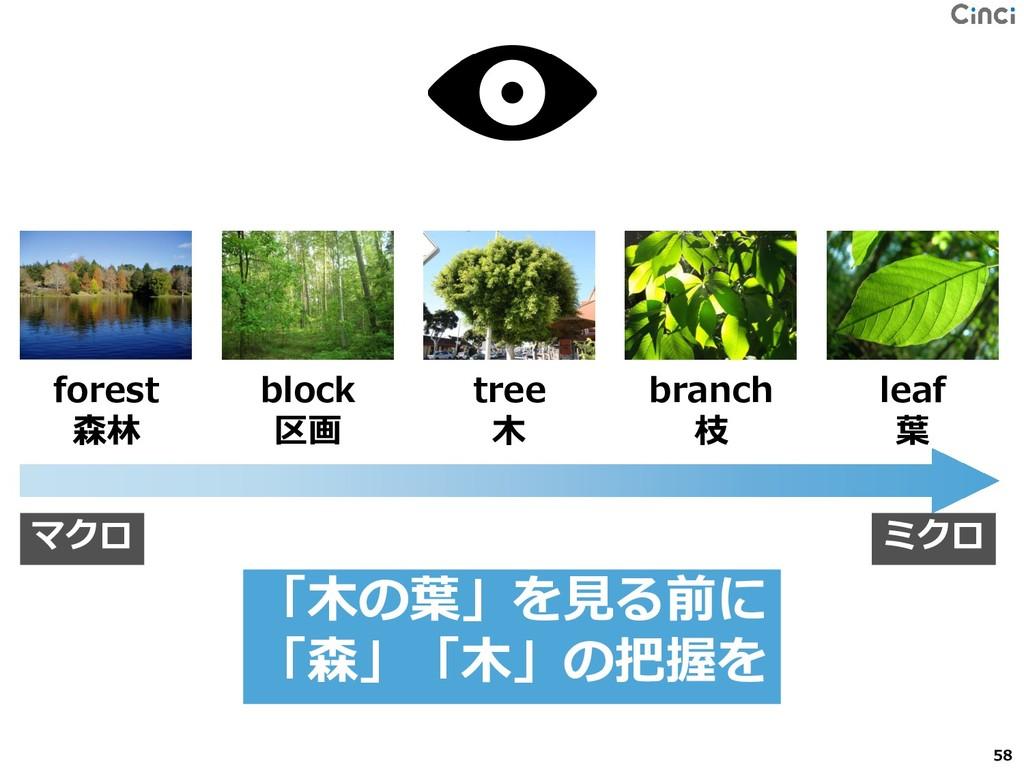 forest 森林 block 区画 tree 木 branch 枝 leaf 葉 マクロ ミ...