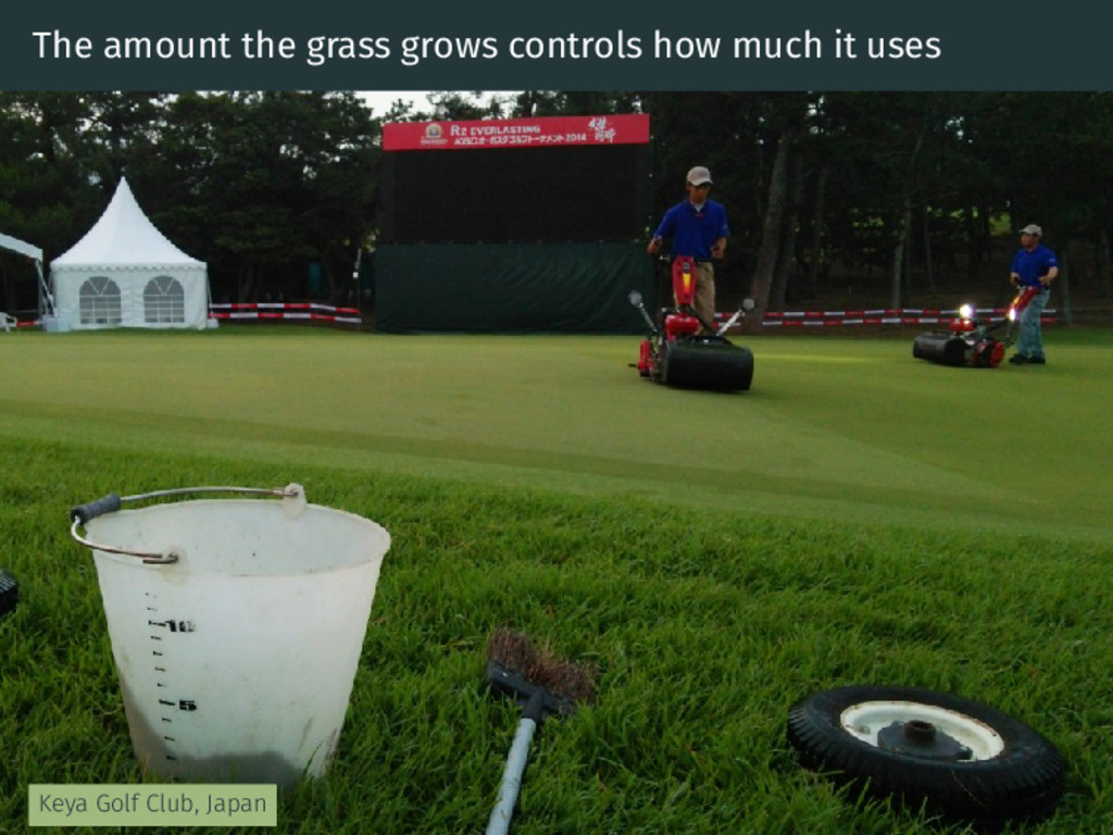 The amount the grass grows controls how much it...