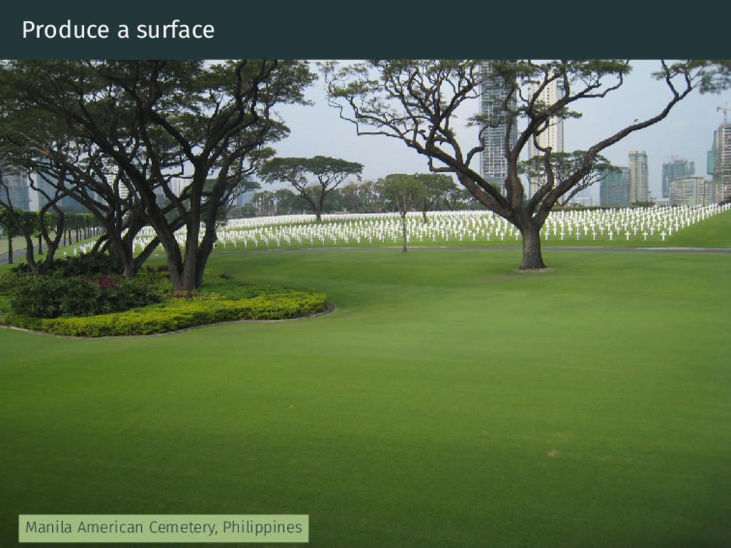 Produce a surface Manila American Cemetery, Phi...