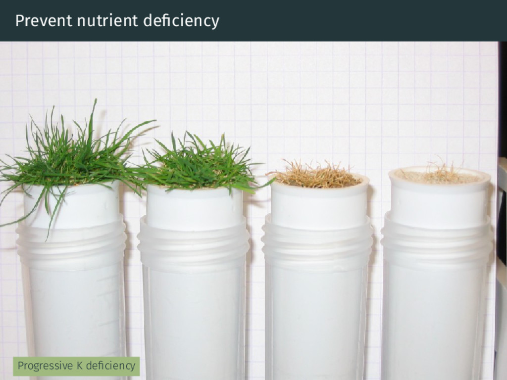 Prevent nutrient deficiency Progressive K deficie...