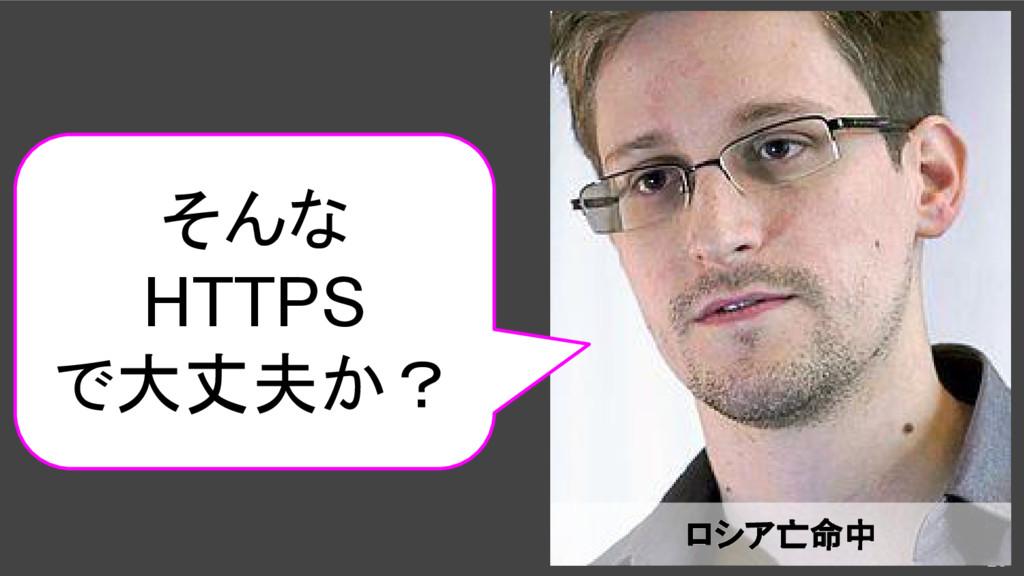 25 ロシア亡命中 そんな HTTPS で大丈夫か?